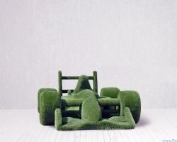 Топиари – Гоночная машина