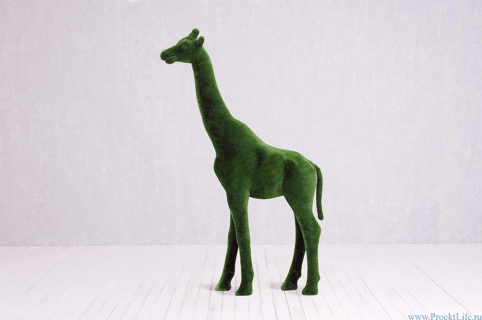 Топиари-жираф