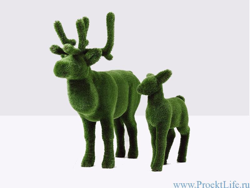Топиари - Олень и оленёнок