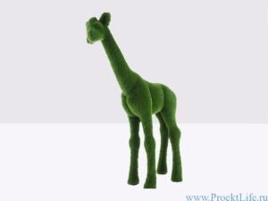 Топиари – Жираф маленький