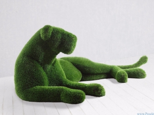 Топиари садовая скульптура- Львица