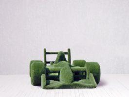Топиари - Гоночная машина